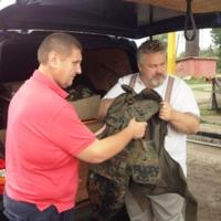 Чернігівські аграрії направили гуманітарний вантаж для земляків в зону АТО
